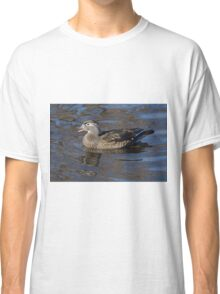 Wood duck hen swimming in lake Classic T-Shirt