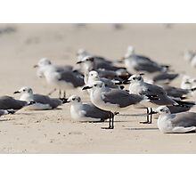 Crowded Beach Photographic Print