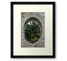A Lush Garden Framed in a Fence Window Framed Print