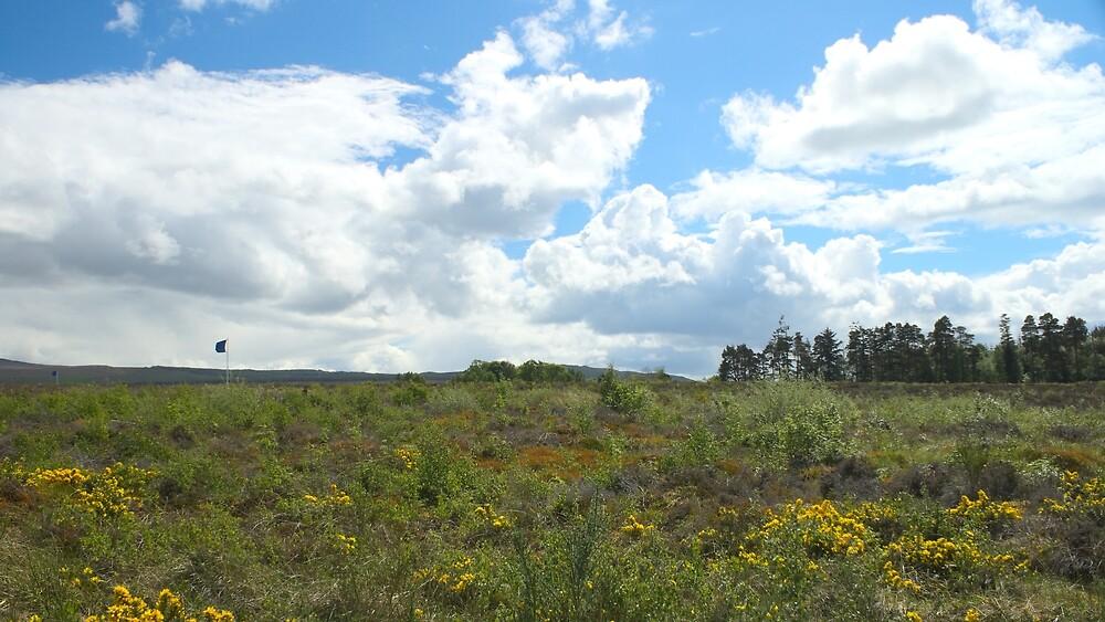 Culloden Battlefield 1 by Antony Lakey