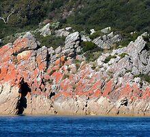 Orange and Blue, Rocky Creek National Park, Tasmania, Australia. by kaysharp