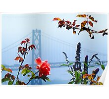 Bay Bridge and the Rose Poster