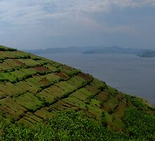 Lake Uganda by Kenji Ashman
