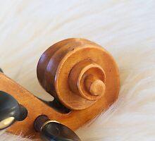 Scroll (iPhone & iPod case) by Janice Chiu