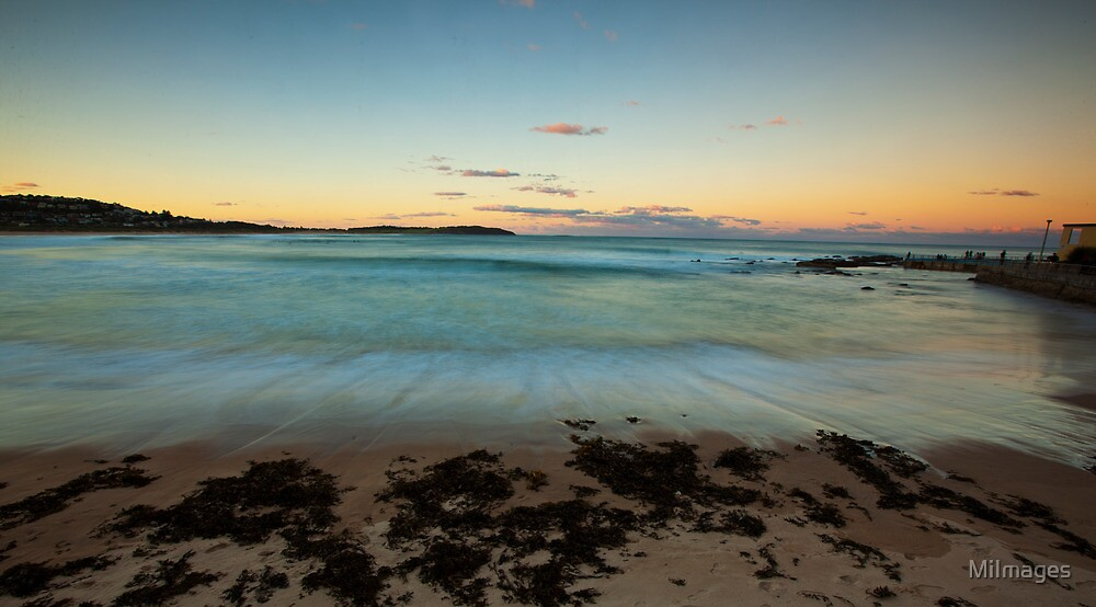 Dee Why Beach NSW Winter 2012 by MiImages