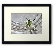 Hey, Guys, I Don't Think This is the Way Out - Day 43 Framed Print