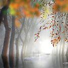 Calm Waters by Igor Zenin