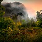 From Times past ~ Wolf Rock ~ by Charles & Patricia   Harkins ~ Picture Oregon