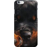 Cute Rottweiler Puppy Resting Head Between Paws iPhone Case/Skin