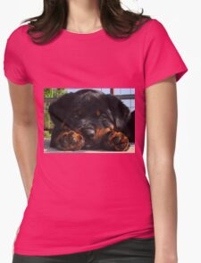 Cute Rottweiler Puppy Resting Head Between Paws Womens Fitted T-Shirt