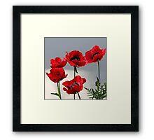 Happy Poppies Framed Print