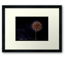 Fire Flowers pt5 Framed Print