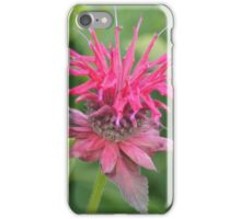 Bee-balm iPhone Case/Skin