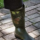 Butterfly Boot by Sandra Lee Woods