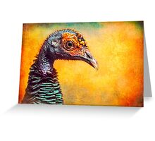 Finer Feathered Friends: Occelated Turkey Greeting Card