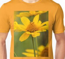 Color Of The Sun T-Shirt