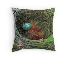 Redwing Blackbird Babys and Egg Throw Pillow