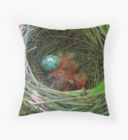 Redwing Blackbird Babys and Egg Throw Pillow
