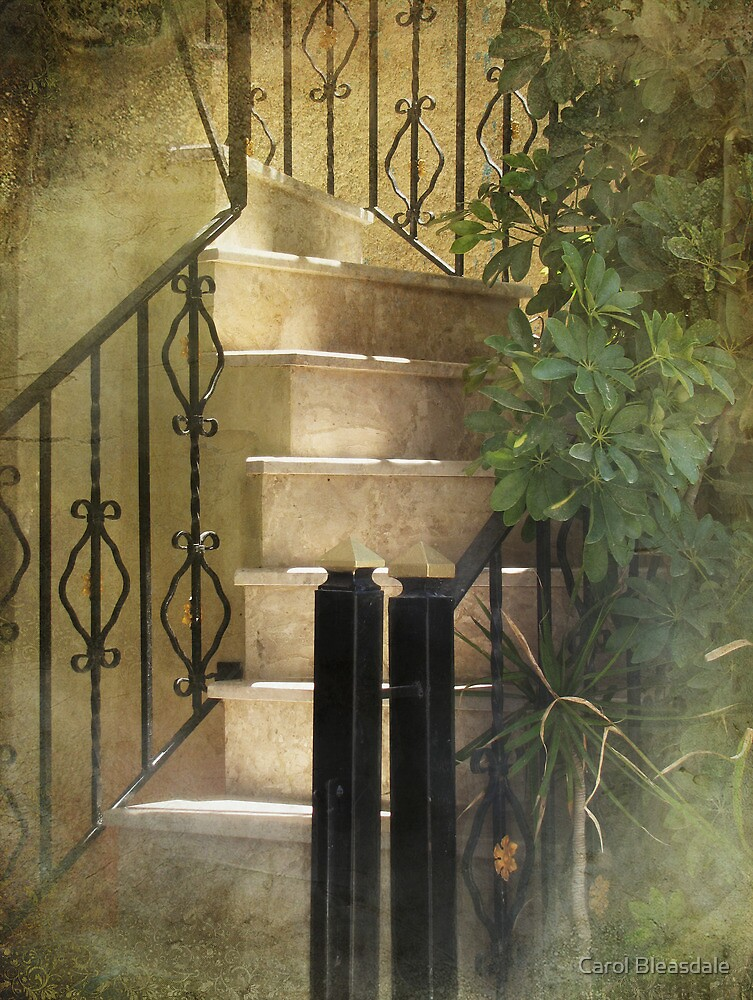 Up Into the Light by Carol Bleasdale