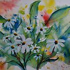 Daisies Galore  by Pamela Hubbard