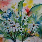 Daisies Galore  by Pamela Hubbard