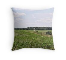 Farmland in Pennsylvania Throw Pillow