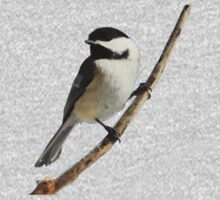 Black-capped Chickadee Closeup One Piece - Long Sleeve