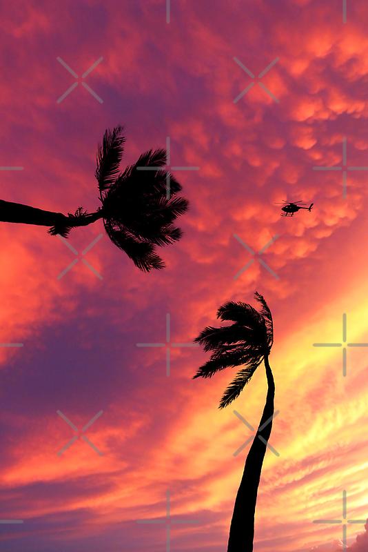 6:33 PM Hawaii Time by Alex Preiss