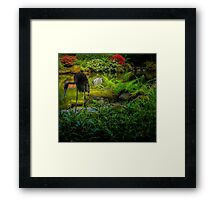 Black Heron Framed Print