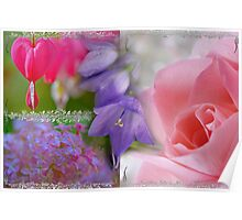 Gladness Abounding ~ Summer Flowering Poster