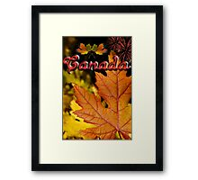 Ties of Love ~ Canada Day Framed Print