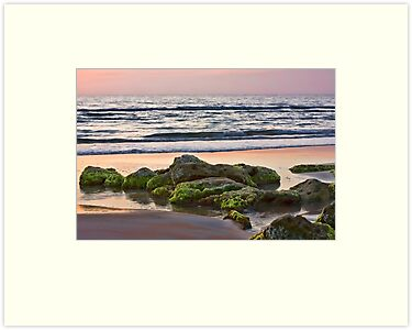 Sunrise on the Beach by Susan Gottberg
