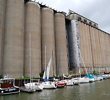 Grain for Sail by AsEyeSee