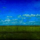 Rural Landscape by Shari Mattox