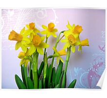 Daffodils with Pink and Swirls Poster