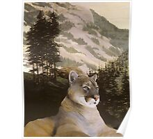 Big Montana Mountain Lion Poster