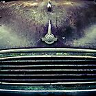 Rusted Old Moggie  by Shari Mattox