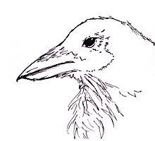 Simplistic Raven  Photographic Print