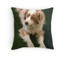 Callow Stretched Throw Pillow