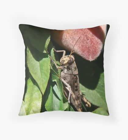 In the Shadow of Peaches Throw Pillow