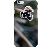 Frost Foliage iPhone Case/Skin