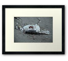 Dead Seagull in Sand Framed Print