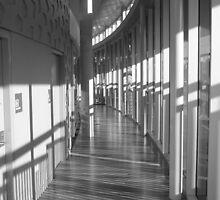 Cooroy Library, Queensland, Australia by Angela Gannicott