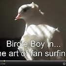 Birdie Boy in... The Art of Fan Surfing by Jaeda DeWalt