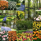 Keukenhof Gardens Collage by kathrynsgallery