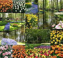 Keukenhof Gardens Collage by Kathryn Jones
