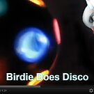 Birdie Boy Does Disco by Jaeda DeWalt