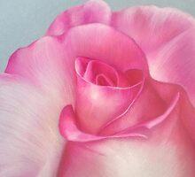 Pink Creation by Belinda Lindhardt