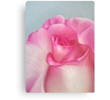 Pink Creation Canvas Print
