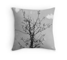 Puddle... Throw Pillow